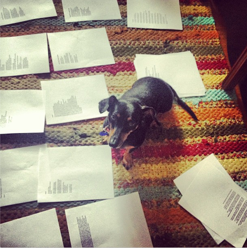 Carrie's dog with her latest poetry manuscript