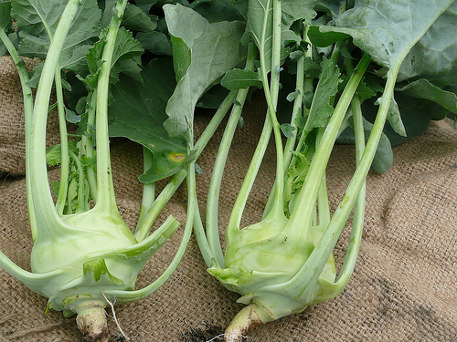 It was kohlrabi.